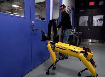 Человек роботу не помеха