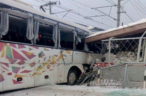 Ласточка и автобус