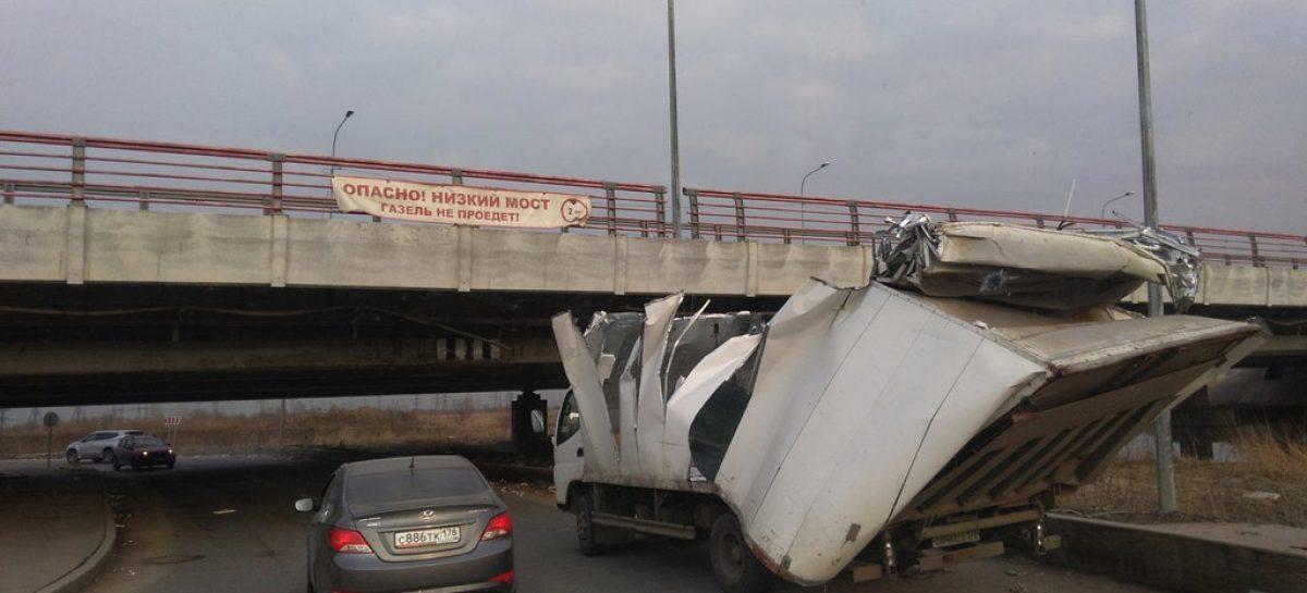 146-ая жертва «моста глупости»