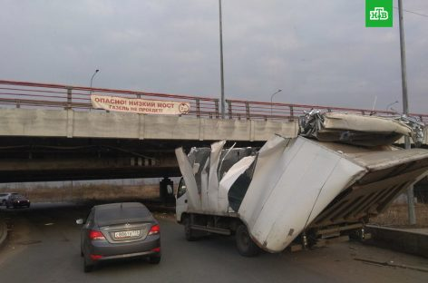 "146-ая жертва ""моста глупости"""