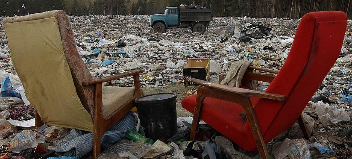 Два временных мусорных полигона откроют рядом с Рузой