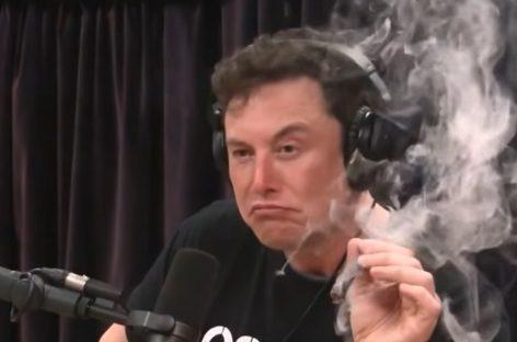 Маск и наркотики в прямом эфире
