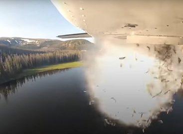 В Юте для заселения озер используют рыбный десант