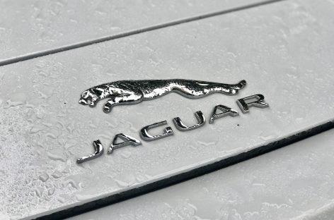 Совместный проект компании Jaguar и фэшн-фотографа Ранкина