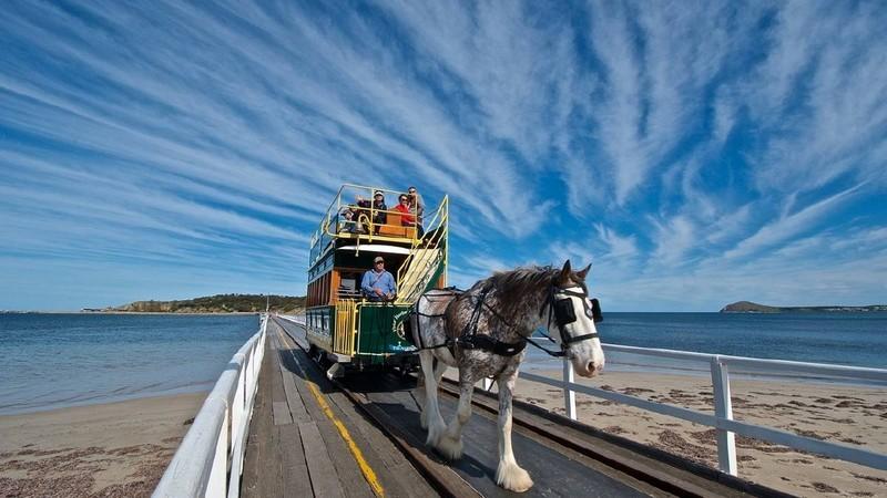 Трамвай на конной тяге