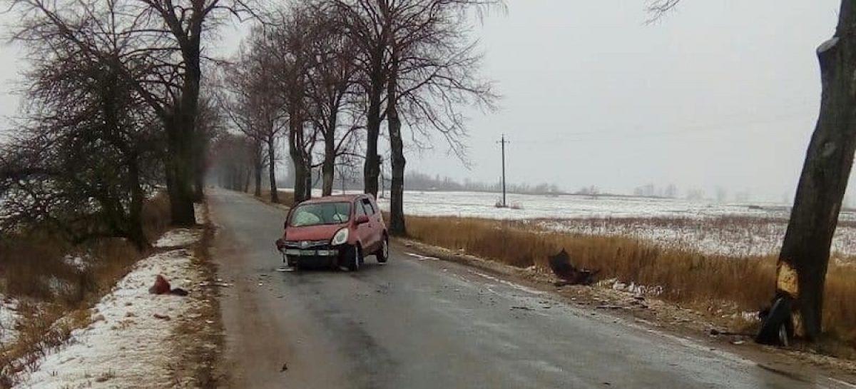 В Гусеве строитель угнал авто нанимателя и врезался на нем в дерево