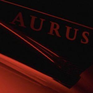 В сети появилось новое фото люксового минивэна Aurus Arsenal