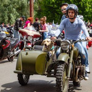 Горячий Brest Bike Festival прошел в Бресте