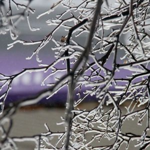 Ледяной дождь придет в Москву