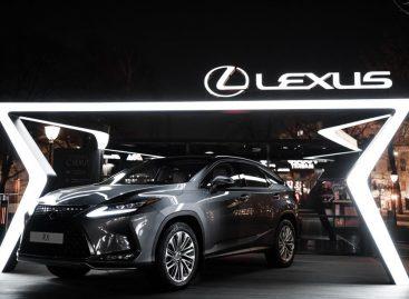 В саду «Эрмитаж» открылось пространство Lexus Lounge