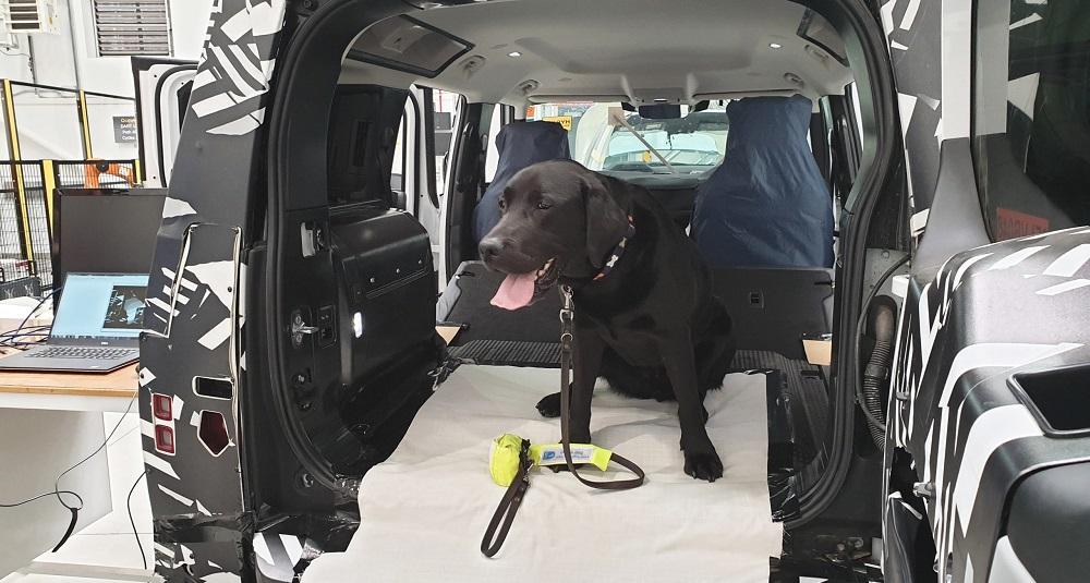 Jaguar Land Rover собачья лапа