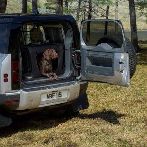 Jaguar Land Rover будет испытывать стойкость лакокрасочного покрытия автомобилей с помощью «собачьей лапы»