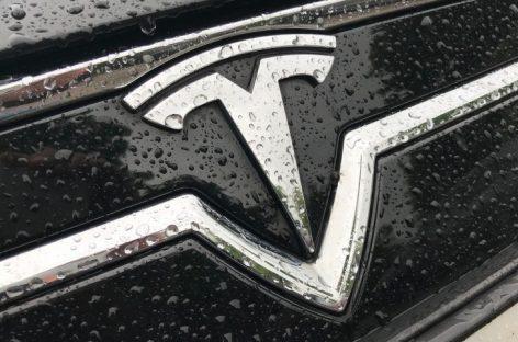На месте будущего завода Tesla в Германии нашли 25 бомб времен Второй мировой