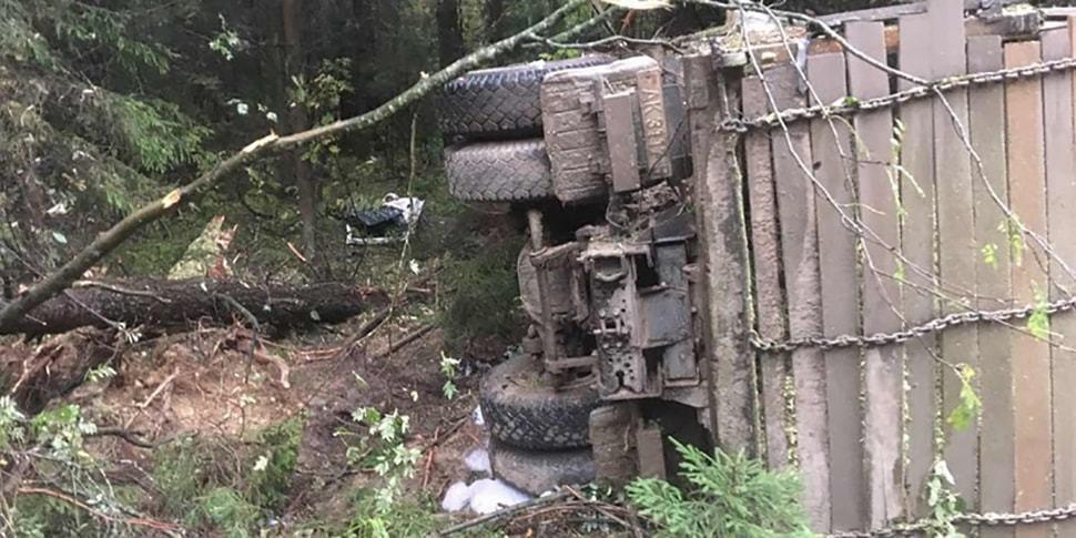 Лесники пилили дерево — ствол упал на кабину едущего МАЗа и придавил водителя