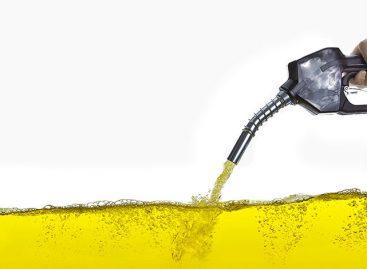 Ford Transit может работать на экологически чистом топливе из растительного масла