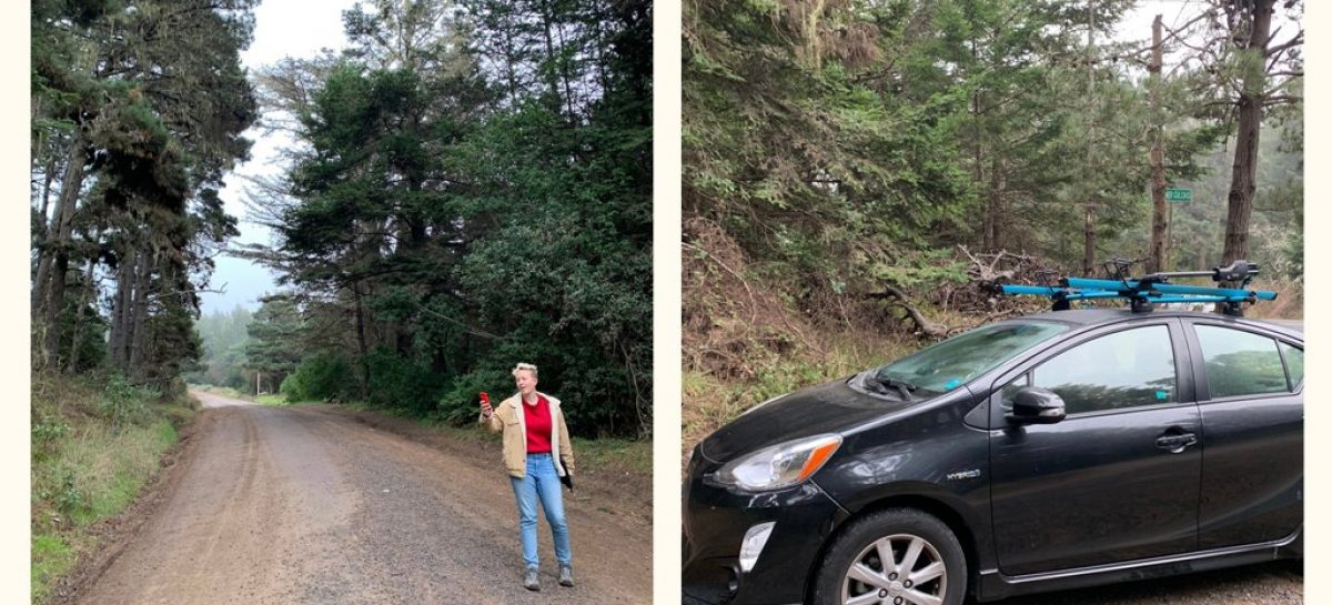 Журналистка взяла машину в каршеринге, потеряла мобильную связь и застряла в горах Калифорнии
