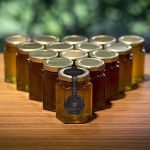 Медоносные пчелы трудятся на территории завода Rolls-Royce
