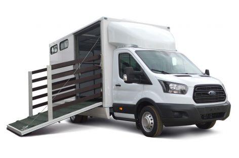 Коневозка: специальная версия Ford Transit для транспортировки лошадей