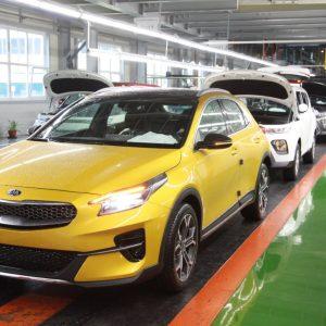Производство Kia XCeed началось в Калининграде