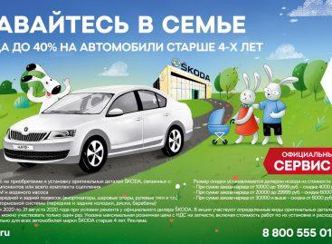 Škoda: сервисные работы с выгодой до 40%