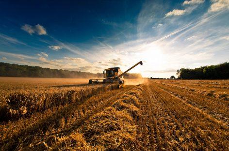 Total Agri: моторные масла для сельского хозяйства